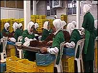 Iranian ladies in white coats and plastic shower caps sift through sultanas in a factory outside Tehran