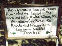 Moon Tree plaque at Camp Koch (Nasa pic)