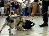 A sniffer dog at a Tube station
