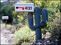 cactus-shaped mailbox holder in the American south