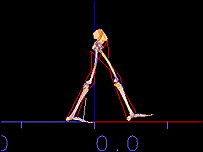 Computer generated model of Lucy walking, Royal Society