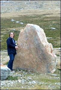 The Falklands stone at its original site on the islands