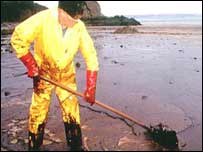 Clean-up in the wake of the Sea Empress