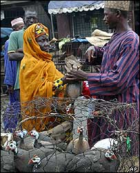 Woman buying guinea fowl in Lagos
