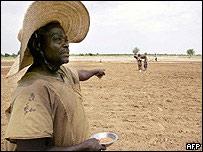 Nigerino señalando un árbol.