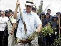 Colombia's President Alvaro Uribe uproots coca plants in National Park La Macarena