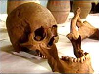 Bronze Age bones