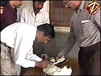 Officials examine dead chickens (Courtesy:  Aaj Tak TV, Delhi)