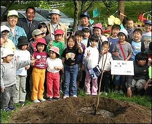 Niños en Gunma, Japón plantan un caqui derivado del árbol de Nagasaki (Gentileza: Proyecto Árbol Caqui)