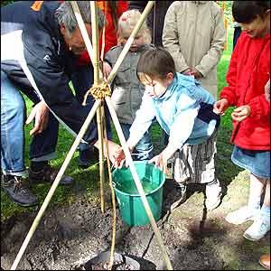 Niños en Bélgica plantan un caqui derivado del árbol original de Nagasaki (Gentileza: Proyecto Árbol Caqui)
