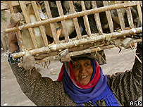 Woman in Egypt carries cage of birds