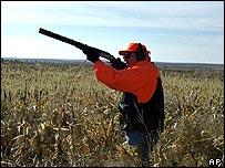 Dick Cheney hunting quail