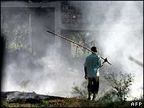 An Indian poultry farm worker sets fire to bird droppings and tree leaves at a bird farm in Navapur