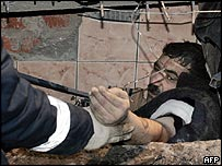 Survivor pulled from the rubble in the Moscow market roof collapse