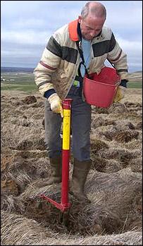 A man plants trees (BBC)