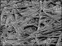 Microscopic image of fibres on a paper (Durham University image)