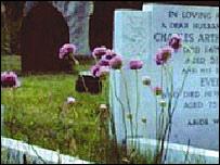 Tall thrift in Ancaster graveyard