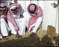 King Fahd's grave in Riyadh