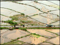 Flooded agricultural land outside Mumbai