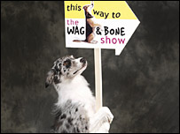 Dog with Wag and Bone Show banner