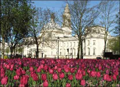 Chris Richards said these tulips appeared overnight at Cardiff's civic centre