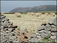 Bales of hay in a field (Image: City and County Council of Swansea)