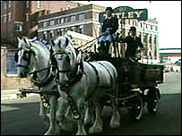 Shire horses pulling a Tetley carriage