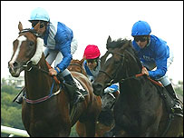 Race horses and jockeys