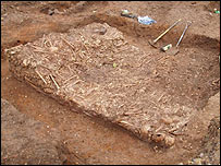 A pile of skeletons immediately after discovery