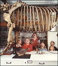 Children at the Grant Museum of Zoology