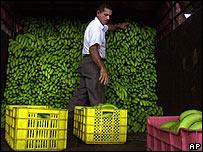 Productor de bananas en Panam�.