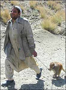 A man flees with his monkey from Miran Shah