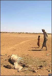 A man and his child pass the carcass of a cow in Denan, Ethiopia