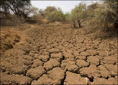Dry river bed (Photo: Christian Aid / Mike Goldwater / Getty Images)