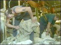 Sheep shearing in Australia