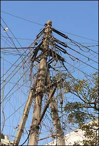 Pylon laden with lines for power theft