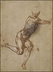 A Seated Male Nude Twisting