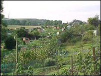 Allotment - Edinburgh