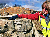 Geologist and fossilised rock. Pic courtesy of Jonathan Neale