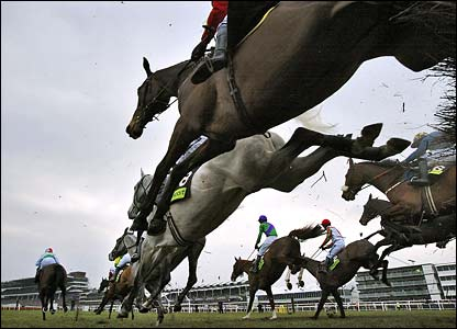 A general shot of racing at Cheltenham