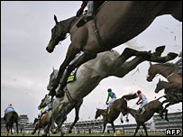 Horses leap fences at Cheltenham