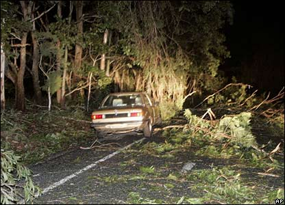 A car on a road outside Cairns covered with branches and leaves