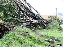 Destrucción causada por ciclón Larry