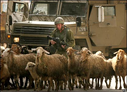 Israeli soldier tries to clear his way through sheep in the West Bank