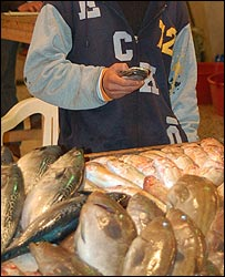 Fish market (photo: courtesy of Wael Deredy)
