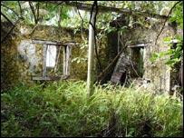 Boddam island ruined plantation