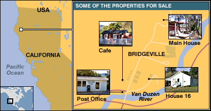 Plan of part of Bridgeville, showing some of the properties that form part of the sale