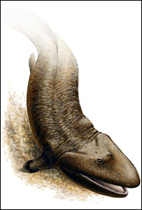Artist's impression of fish (National Geographic)