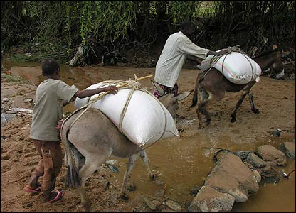 Men with donkeys carrying loads