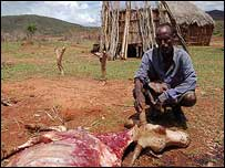 Tari Bonja with a dead cow